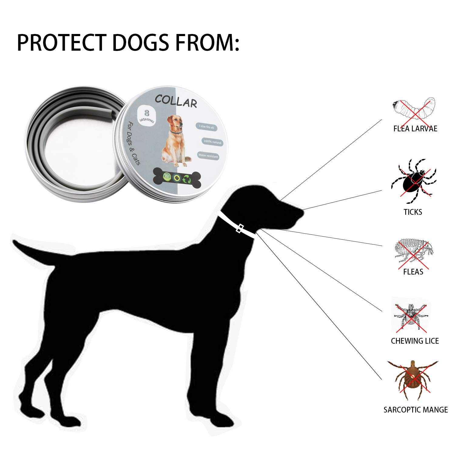 Vetoo 2 Pack Flea And Tick Collar For Dogs With 25 inch Length for Small Medium Large Dogs,Adjustable Waterproof Dog Anti Flea Collar Have 8 Months Effective Protection