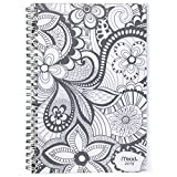 Mead Weekly/Monthly Planner, January 2019 - December 2019, Small Size, Zendoodle, Design Will Vary (CRW41710)