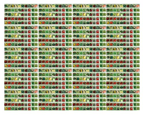 1000 Packs Assorted Heirloom Vegetable Seeds 30+ Varieties All Seeds are Heirloom, 100% Non-GMO Tens of Thousands Seeds (1000 Vegetable Seeds) by Black Duck Brand (Image #2)