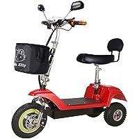 CYGGL Scooter eléctrico para Adultos Mini Triciclo eléctrico Plegable Batería de Litio 48V Resistencia 35 km 350W Peso del Auto 22kg El Auto de la batería Puede soportar el Peso 100KG