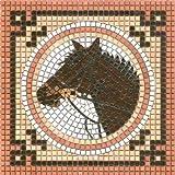 Mosaico Kit, 20x20 cm, Cavallo