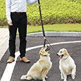 HTKJ No Tangle Dog Leash Coupler, Dual Double Dog