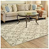Superior Aberdeen Collection Area Rug, 8mm Pile Height with Jute Backing, Geometric Crosshatch Nature Motif, Fashionable and Affordable Woven Rugs – 8′ x 10′ Rug