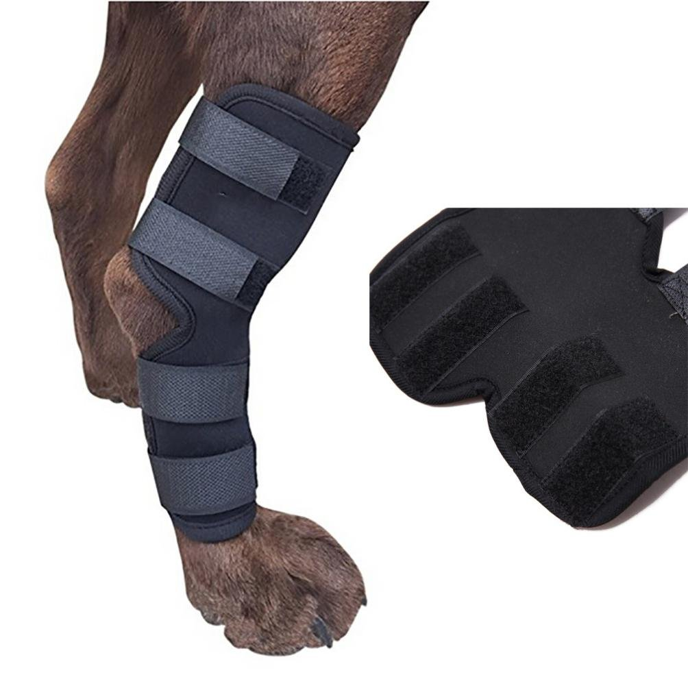Clearance! Wensltd Extra Supportive Dog Canine Rear Leg Hock Joint Wrap Protects Wounds (L, Black)