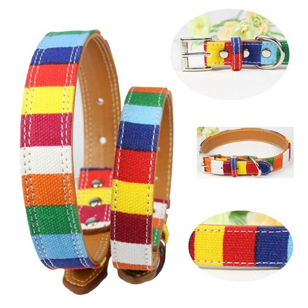 Badalink Collar para Perro Perrito Collar de Varios Colores QS14-BK3122-ES
