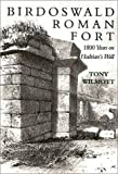 Birdoswald Roman Fort, Tony Willmott, 0752419137