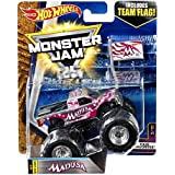 Hot wheels Monster Jam 2017 release #3/10 Team Flag Madusa silver/chrome and pink 1:64 scale monster truck die-cast