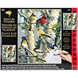 Plaid Creates Paint by Number Kit (16 by 20-Inch), 22078 Song Birds
