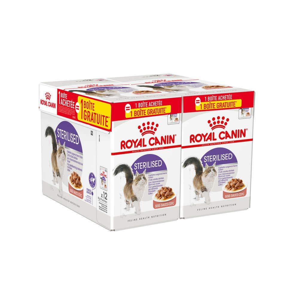 Royal Canin Alimento para gatos esterilizados: Amazon.es ...