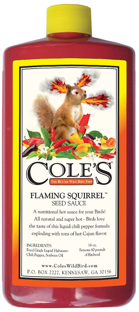 Cole's FS16 Flaming Squirrel Seed Sauce, 16-Ounce