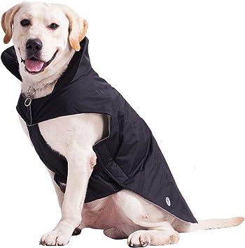 Amazon.com: PROPLUMS - Chaqueta de invierno para perro, de ...