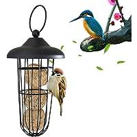 Alimentador de pájaros Dispensador de alimentación de Bolas