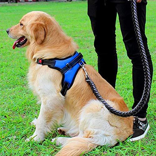 Ajustable Grande Grandes Suministros Medianos Perro De Pequeños Correa Azul Para Mascota Arnés Perros Feidaeu Mano UwqXHIx