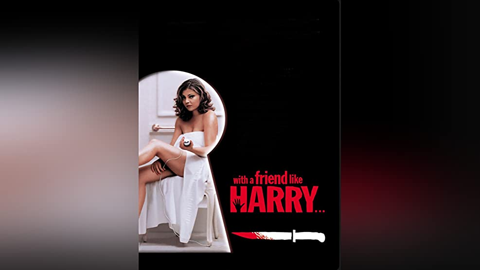 With A Friend Like Harry (English Subtitled)