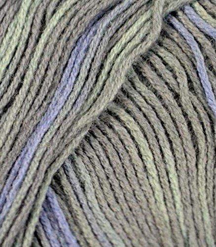 Berroco Comfort Sock Hari Hari 1811 Yarn