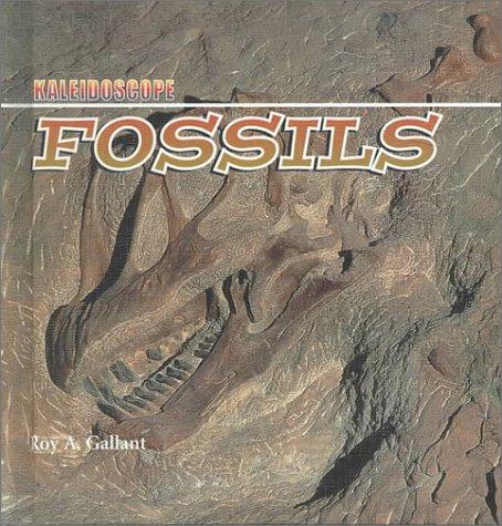 Kaleidoscope Earth Science: Rocks, Minerals, Water, Fossils (Kaleidoscope, 1) ebook