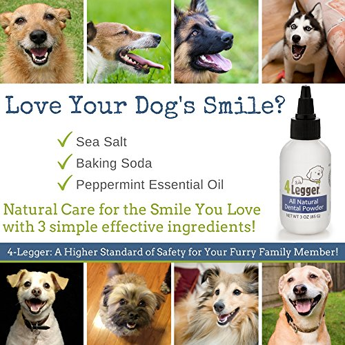 good 4-Legger All Natural Dental Powder - Mint Fresh with Peppermint Essential Oil - Holistic Oral Hygiene Care - Safer than Traditional Dog Toothpaste for Plaque and Tartar Control - USA - 3 oz