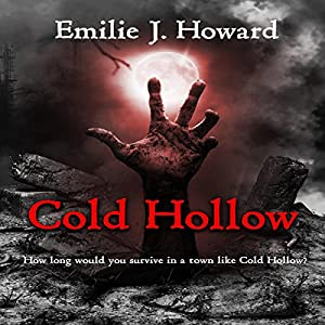 Cold Hollow Audiobook