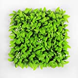 ULAND Artificial Hedges Panels, Outdoor Greenery Ivy Privacy Fence Screening, Home Garden Wedding Decoration, Pack of 4pcs 10''x10''