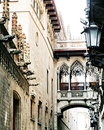 Barcelona Library Wall (Barcelona Spain Photography - Architecture Print - Gothic Quarter)