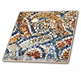 3dRose Danita Delimont - Artwork - Turkey, Izmir, Selcuk, ancient city Ephesus. Mosaic floors. - 8 Inch Glass Tile (ct_277028_7)