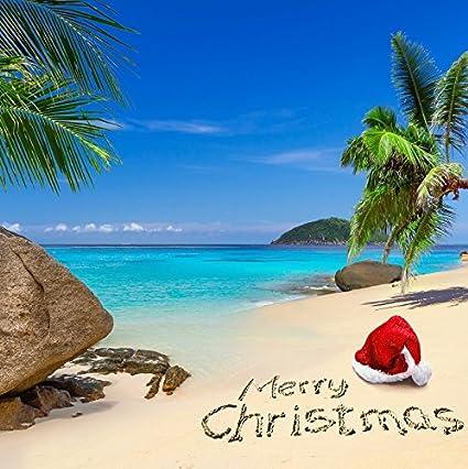 Christmas Beach.Ofila Tropical Beach Christmas Backdrop 5x5ft Photography Background Seaside Holiday Blue Sky Palm Trees New Year Celebration Children Kids Portraits