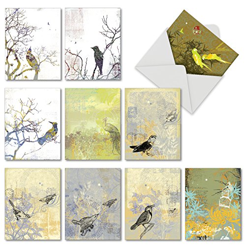 "- 10 Note Cards with Envelopes - Assorted 'Bird Collages' Blank Greeting Cards - Unique All-Occasion Cards for Thank Yous, Retirements, Birthdays - Stationery Notecards (4"" x 5 ¼"") #M2987OCB"