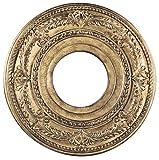 Livex Lighting 8204-65 Ceiling Medallion, Hand Painted Vintage Gold Leaf