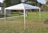 Azadx 10′ x 10′ Weekender Party Wedding Tent Outdoor Heavy Duty Gazebo Canopy Car Shelter Review