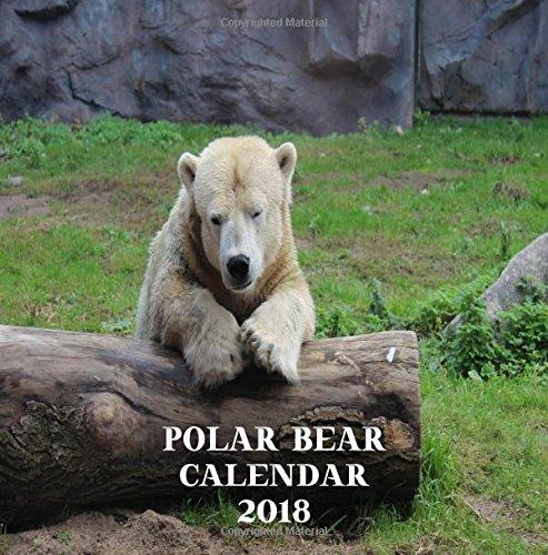 Download Polar Bear Calendar 2018: Polar Bear 2018 Wall Calendar Bears Bears Mini 8.5 x 8.5 12 Month Colorful Bear Images ebook