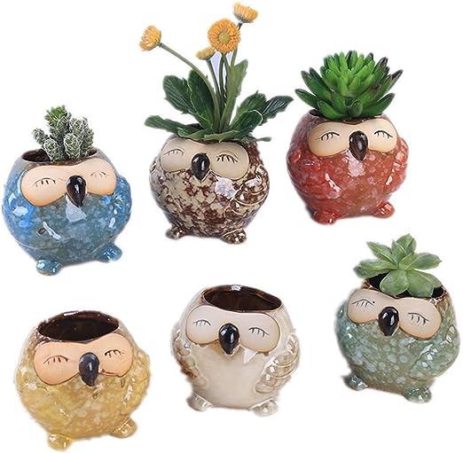 Leopard Head Figurine vase pot céramique Plante succulente plante fleur décoration maison