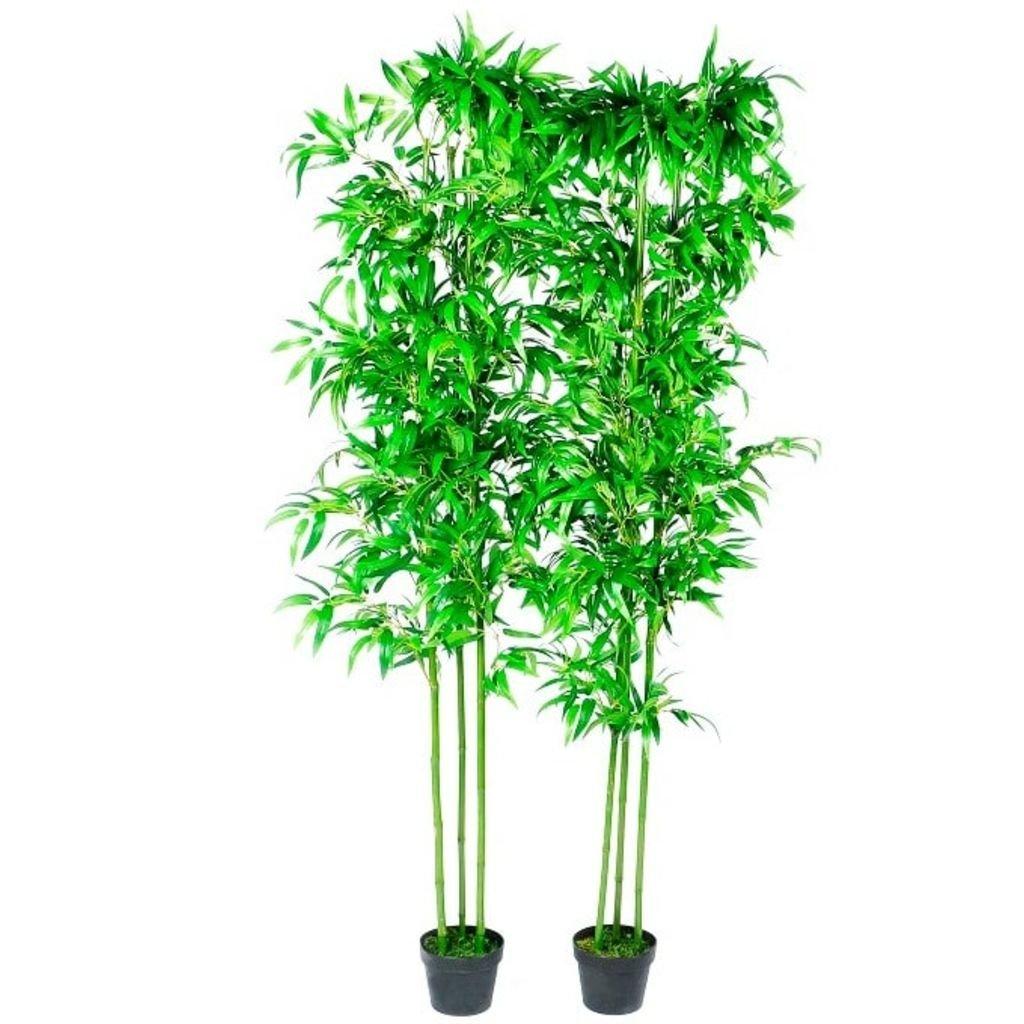 Juego de 2 Plantas Decorativas de bambú