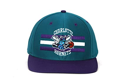 9df1283d45247c Image Unavailable. Image not available for. Color: NBA Charlotte Hornets  Horizon Teal 2 Tone Snapback Cap Retro