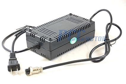 Amazon.com: 24 V 24 V cargador de batería para Gas Scooter ...