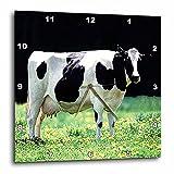 Farm Animals – Holstein Cow – 15×15 Wall Clock (dpp_624_3) For Sale