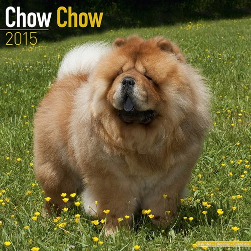 Chow Chow Calendar - Breed Specific Chow Chow Calendar - 2015 Wall calendars - Dog Calendars - Monthly Wall Calendar by Avonside