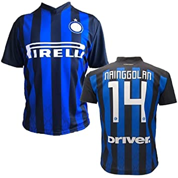 PEGASO Jersey Nainggolan 14 Camiseta Inter Official Replica 2018/2019 PS 27380: Amazon.es: Deportes y aire libre