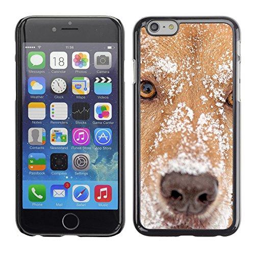"""Premio Sottile Slim Cassa Custodia Case Cover Shell // V00003248 chien avec de la neige sur la tête // Apple iPhone 6 6S 6G 4.7"""""""