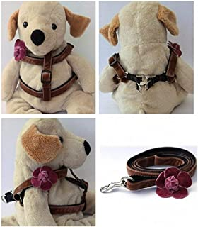 "product image for Diva-Dog 'Camellia Dusty Rose' Custom 5/8"" Wide Dog Velvet Step-in Harness with Plain or Engraved Buckle, Matching Leash Available - Teacup, XS/S"