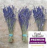 Findlavender - Royal Velvet Lavender Bundles - 14'' - 16'' Long - Can Be Used for Any Ocassion - Perfect for your wedding! - 3 Bundles