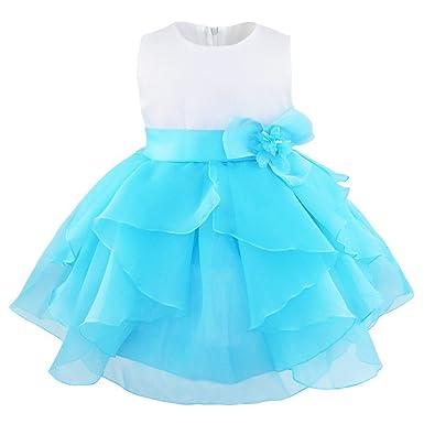 iiniim Vestido de Bébes para Bautizo Vestido de Fiesta para Niñas y Bebés 3 Meses a 3Años de Organza Flor Vestido de Tutú: Amazon.es: Ropa y accesorios