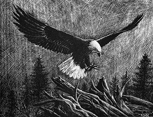 """Lithograph print""""Eagle"""" A pen and ink on scratchboard drawing of an American bald eagle in flight"""