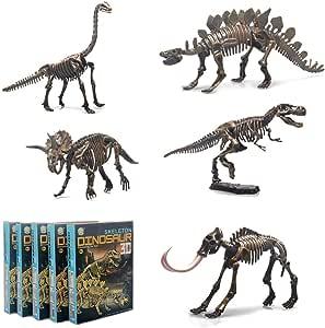 36 piezas de dinosaurio esqueleto f/ósil de dinosaurio esqueleto de dinosaurio diferentes figuras de dinosaurios huesos para Dino Sand Dig ciencia juegos decoraci/ón