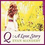 Q: A Love Story | Evan Mandery