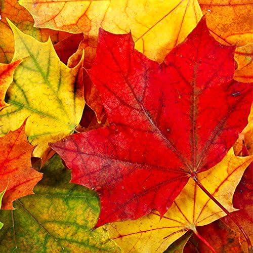Tiere 20 Servietten Igel in gemalter Herbstszene Herbst 33x33cm