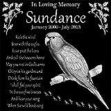 Personalized Conure Pet Bird Memorial 12''x12'' Engraved Black Granite Grave Marker Head Stone Plaque SUN2