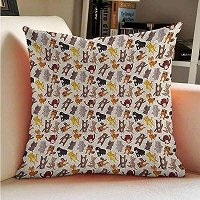 Amazon.com: Almohadas ocultas con cremallera, diseño de ...