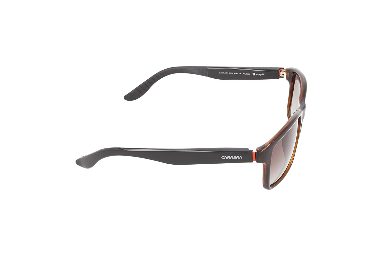 2da533ef0adc Amazon.com: Carrera 8002/S Sunglasses Havana/Brown Gradient Polarized:  Clothing