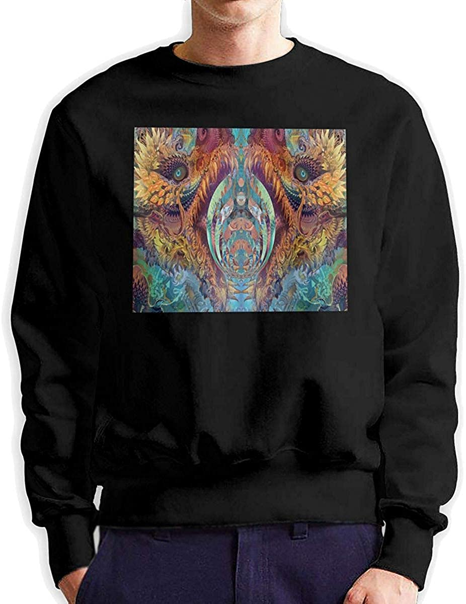 YCR4FC Bassnectar Music Band Mens Fashion Crew Neck Sweatshirt Long Sleeve Large