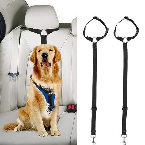 Docamor - 2 Unidades Cinturón de Seguridad de Coche para Perro ...
